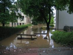Archiv/Hochwasser 2013.JPG (mittel)